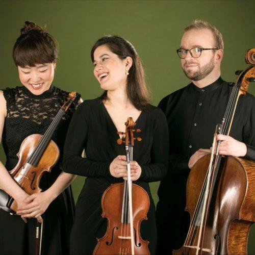 Trio Boccherini – I trii per archi di Beethoven – esecuzione integrale, secondo concerto
